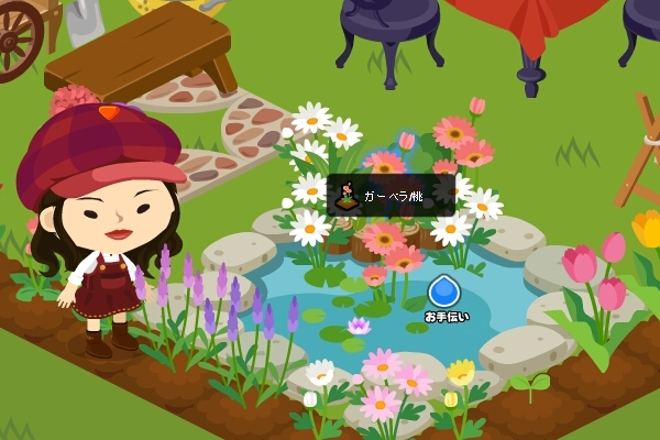 111102-池の中にお花が.jpg